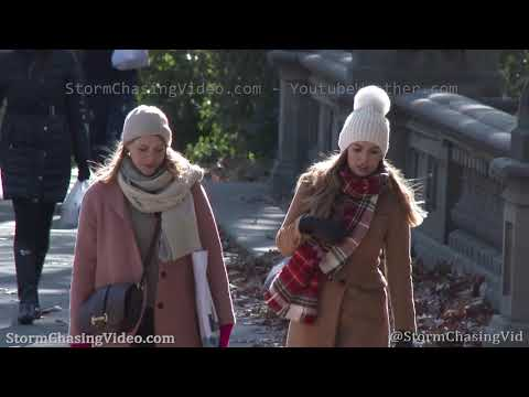 Record Cold Hits Central Park 5th Ave in New York City, NY – 11/13/2019