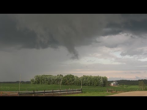 Mower County, MN Severe Storms And Possible Tornado – 6/28/2020