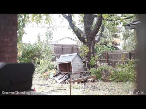 Ice Storm takes down tree branches in Oklahoma City, OK – 10/26/2020