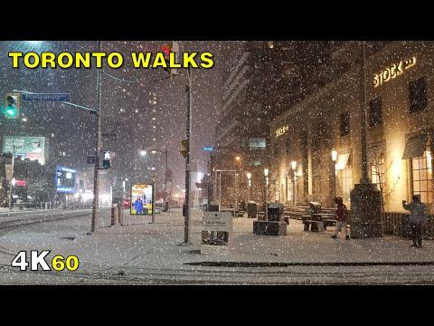 Toronto's First Snowfall of the Season Walk on November 1, 2020
