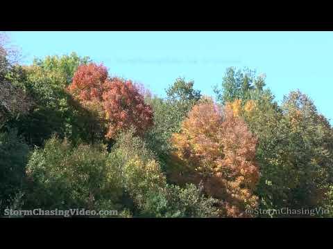 Pretty Fall Colors, Barron County, WI – 9/22/2021